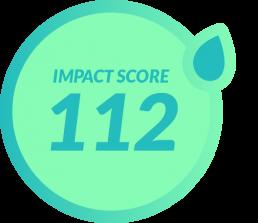 Sustainable Impact Score