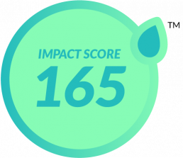 Sustainable Impact Score
